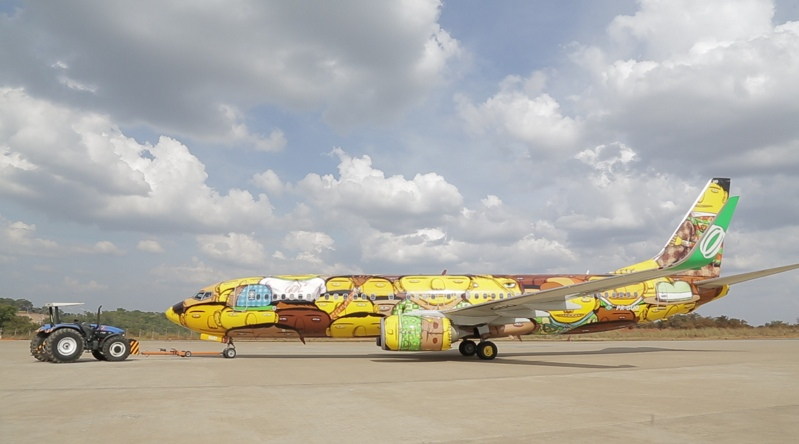 ~ By Os Gemeos ~ Boeing 737 for the World Cup