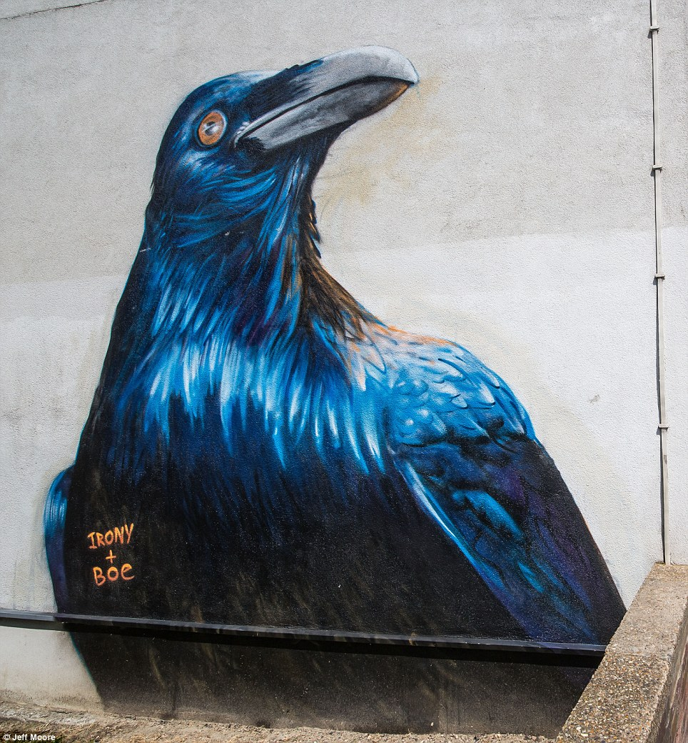 Raven By Irony and Boe