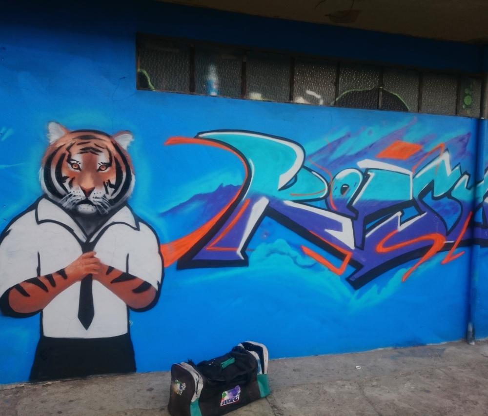 TigerN (4)